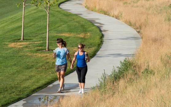 sidewalk or paved walking trail