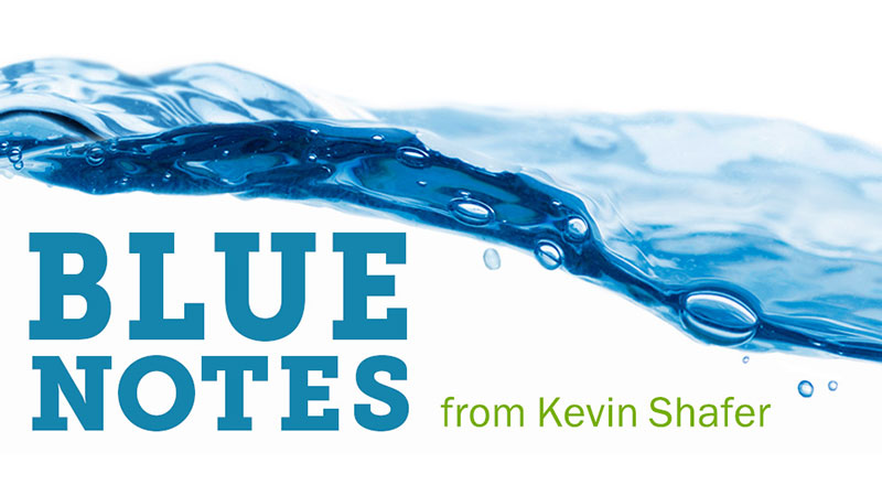 Blue Notes Newsletter from Kevin Shafer
