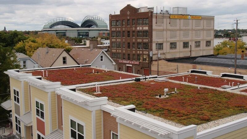 Green roof in Milwaukee