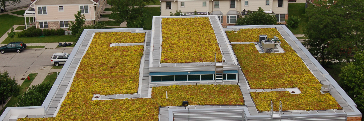 Green roof planted on a building to hold rainwater.