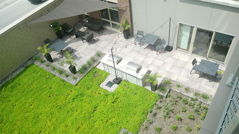 MMSD Green Roof helps keep waters clean