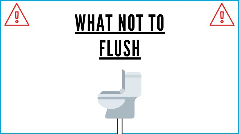 what not to flush graphic
